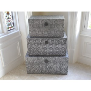 Silver Embossed Medium Trunk