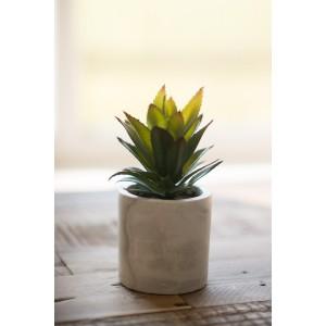 Faux Aloe  - Small