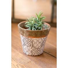 Green Terracotta Rustic Planter