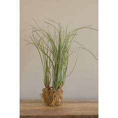 Faux Grass With Soil & Sand